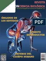 Word Revista