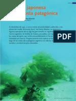 Casas  Schwindt 2008 Un alga japonesa en la costa pagagónica.pdf