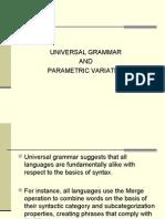 Universal Grammar and Parametric Variation