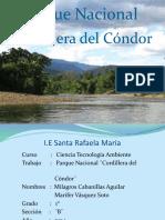 PARQUE NACIONAL DE L CONDOR (2).pptx