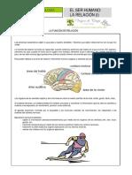 Ficha 3 Función de relación (1).pdf