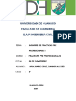 INFORME-FINALDANNR (1).docx