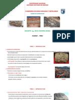 DIAPOSITIVAS DE PETROLOGIA [Autoguardado] - copia