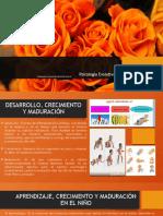 DESARROLLO DE LA ACTIVIDAD (UNIDAD I).pptx