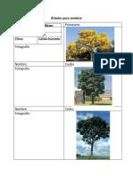 Árboles para sembrar (1).docx