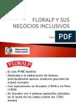 Negocios Inclusivos con proveedores de bajos ingresos