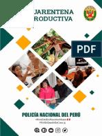 RECOMENDACIONES DE LA PNP PARA UNA CUARENTENA PRODUCTIVA