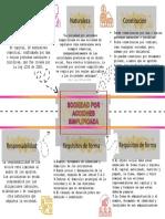 S.A.S.pdf