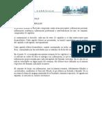 formato curriculo para la carrera ordinaria doc 77 kb (1)