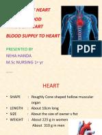 Basics of cardiovascular system, Heart