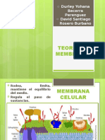 TEORIA DE MEMBRANAS