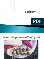 Culture_1st year.ppt