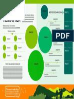 esquema infografia - Desarrollado Ana Holguín