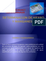 Hierro y Manganeso.pptx