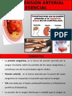 hpt-esencial-121019005719-phpapp01