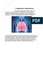 Apparato respiratorio ricerca