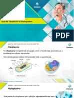 AULA 6 - Citoplasma