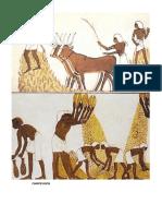 SOCIEDAD EGIPTO.docx