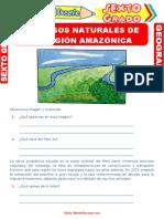 Recursos-Naturales-de-la-Región-Amazónica-para-Sexto-Grado-de-Primaria