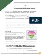 PollinationFlowerFruitSE (1)