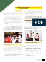 Lectura - La inspección laboral.pdf