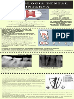 MORFOLOIA DENTAL INTERNA.pdf