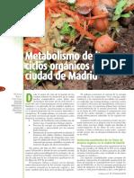 EH53_Metabolismo