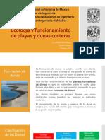 Tarea 9. Ecología y funcionamiento de playas y dunas costeras.pdf