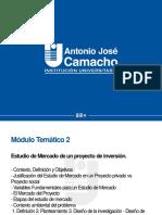 MT2-Estudio de Mercado-Magistral
