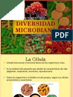 Microbichos.pdf