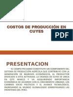 COSTOS DE PRODUCCION CUYES