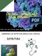 Metabolismo lipideos