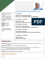 cv-boudad.pdf