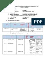 plan remoto modelo.docx
