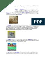 Las técnicas de pintura se pueden dividir en grandes grupos dependiendo del medio en el cual