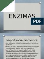 337540674-Enzimas-Tf