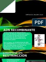 4. TECNOLOGIA-DEL-ADN-RECOMBINANTE