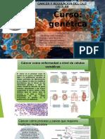 3. REGULACION-DEL-CICLO-CELULAR-Y-EL-CANCER II