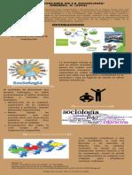 Otero_Diego_Infografia