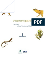 [BOOK] Disappearing Jewels