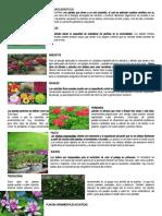 TIPOS DE PLANTAS ORNAMENTALES Y ALGUNOS BENEFICIOS.docx