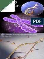 Aula 5 Acidos Nucleicos.pdf