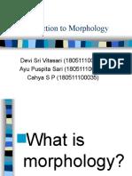 Morphology Presentation