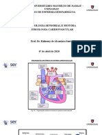 AULA_6_Fisiologia_Sensorial_Cardiovascular.pptx