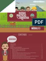 Mdulo_3_Ganadera_amaznica_sostenible