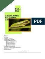 ANFIBIOS, características, diversidad y evolución