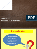 reproduction in plants.ppt