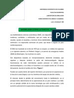 DESFIBRILADOR EXTERNO AUTOMATICO (DEA)