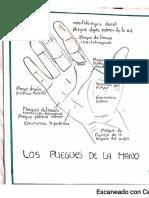 pliegues de la mano