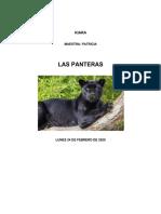 panteras kiki.pdf